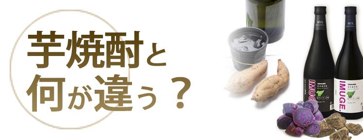 芋焼酎と何が違う?