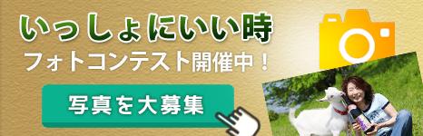 多良川フォトコンテスト