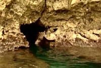 地下水脈へと続く入口